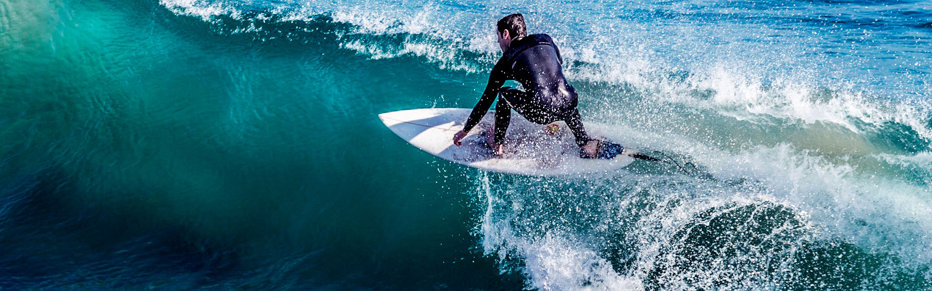 Surf safari PRO